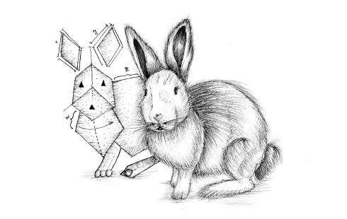 Picture of a rabbit with its proto-rabbit